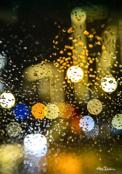 City Lights #1