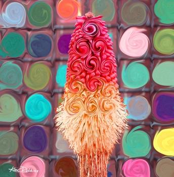 Desert Flower Pop