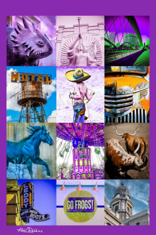 Fort Worth Collage in Color