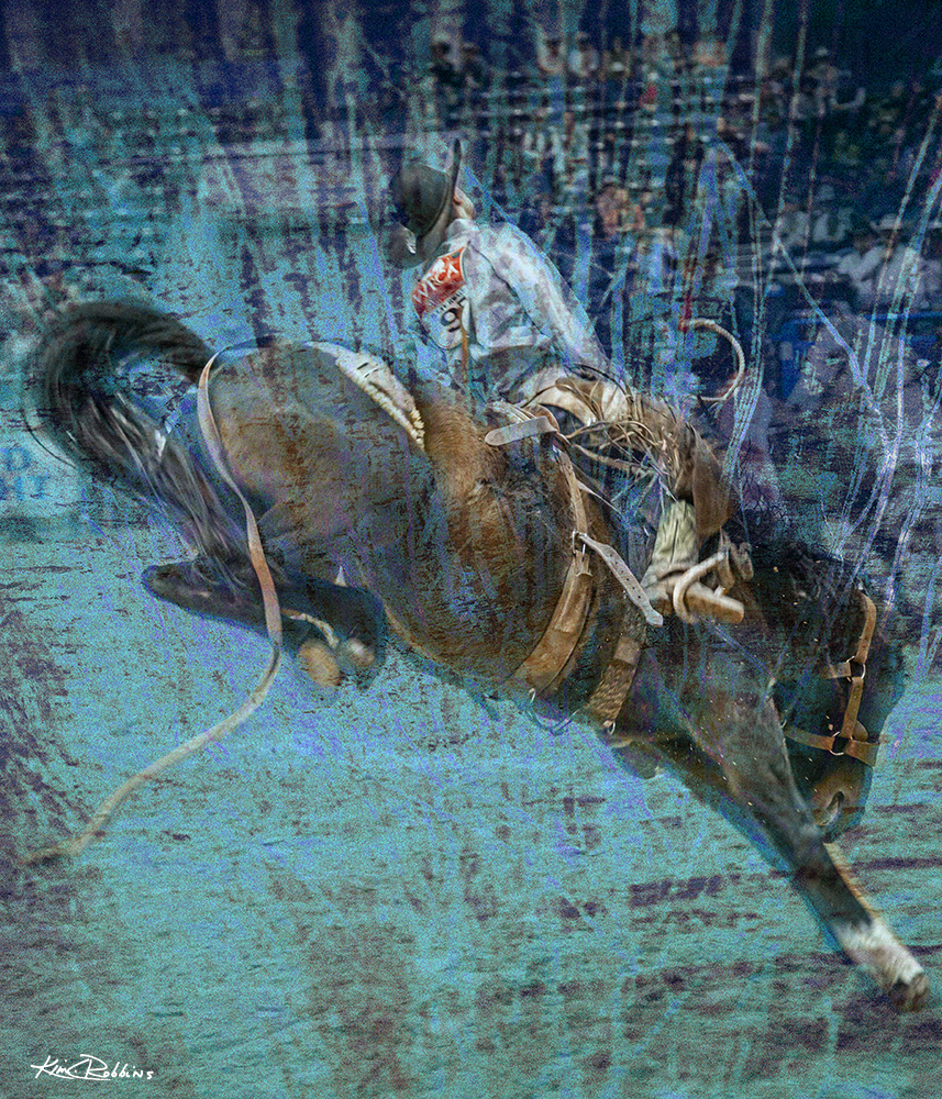 Buckin Horse #4