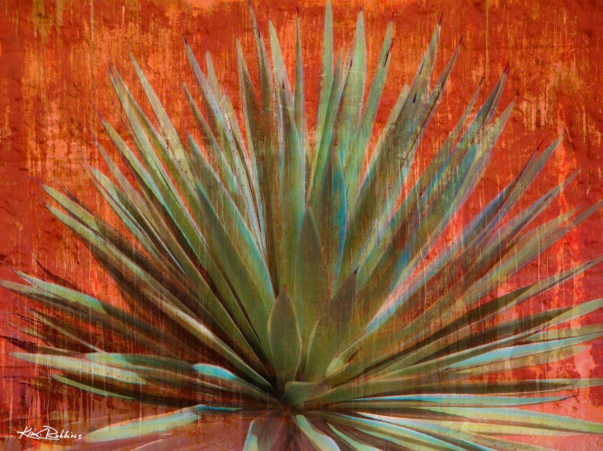 Agave In Desert Orange