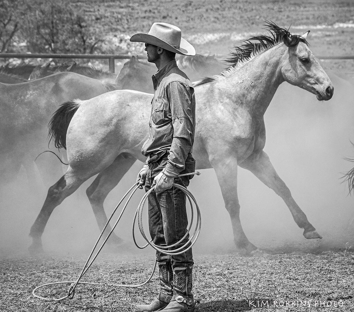 Dusty & Horse