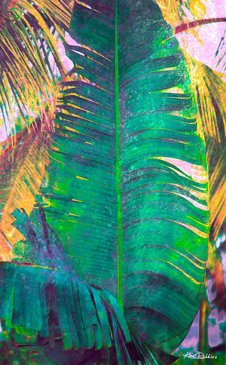 Islamorada Banana Leaf