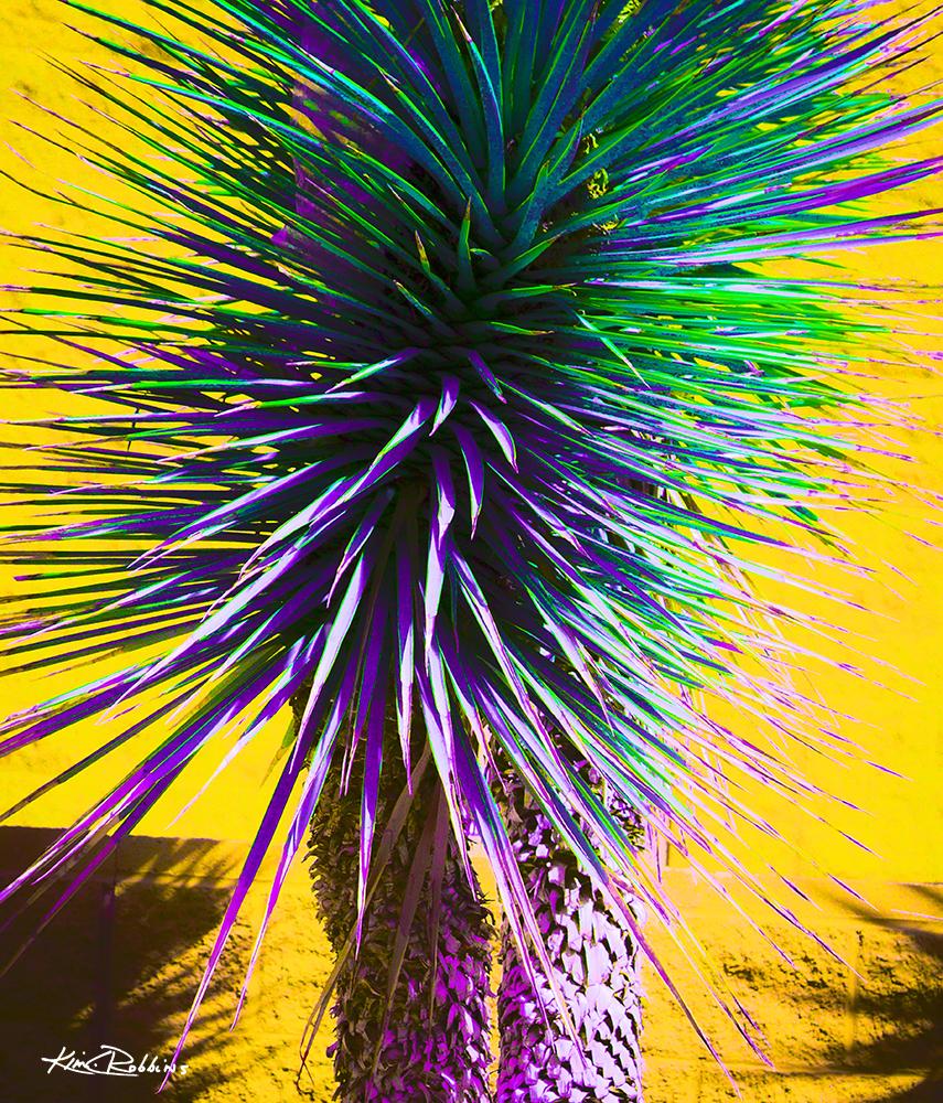 Yucca In Purple & Green
