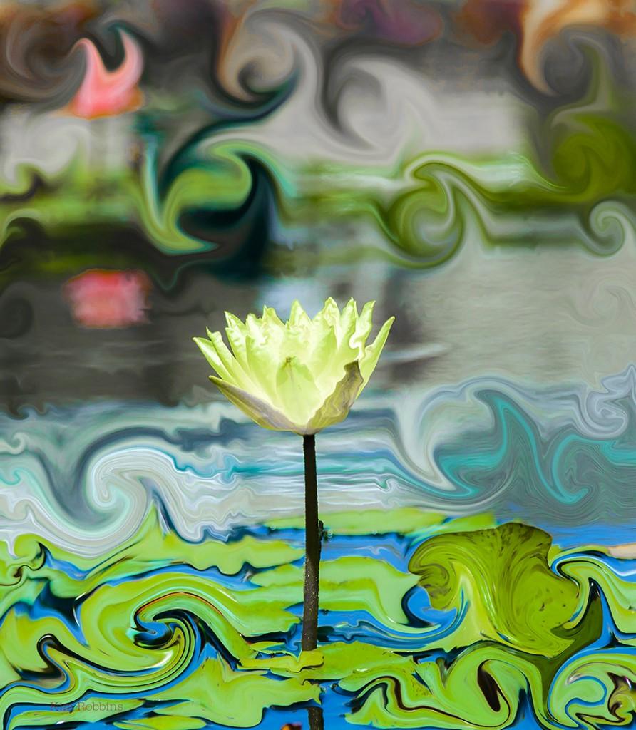 WaterLilyDreams-892x1024.jpg